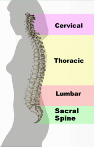 Back Injury Claims from BeardsellsPersonalInjury.co.uk