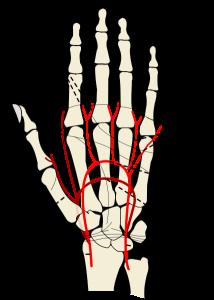 Hand Injury Claims Compensation from Beardsellspersonalinjury.co.uk