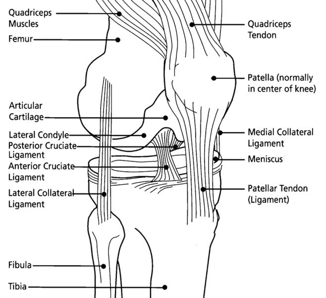 Compensation for Knee Injury from Beardsellspersonalinjury.co.uk